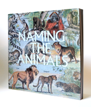 NamingThe Animals