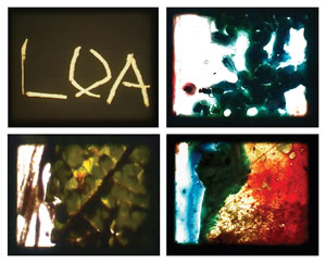 Ewelina Bochenska, (film stills) LOA, 2013, 16mm film decayed in homemade concoctions, including tumeric, fruits, flowers and organic material. 5:39 minutes.